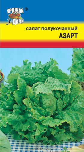 Салат азарт выращивание из семян 39